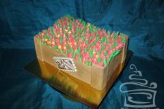 """Торт """"Ящик с тюльпанами"""""""